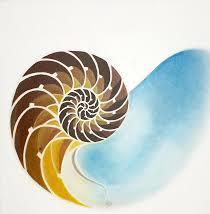 Vakantiehuis Nautilus